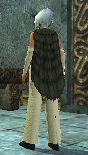 Feather Cloak który dodatkowo może nam dawać iluzję niedźwiedzia.