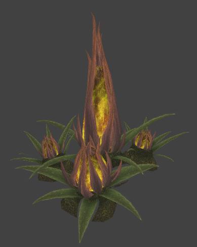 2013_03_13_Hossin_Spike plant