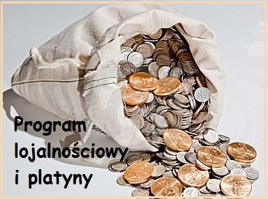 platyny daily logo