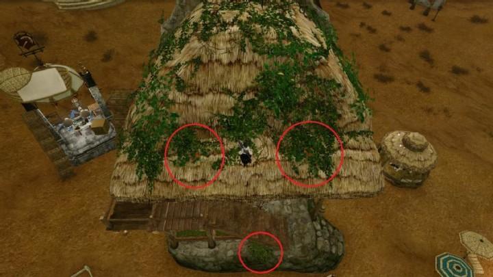 archeage_1-8_domy-farmera-dziekie-rosliny