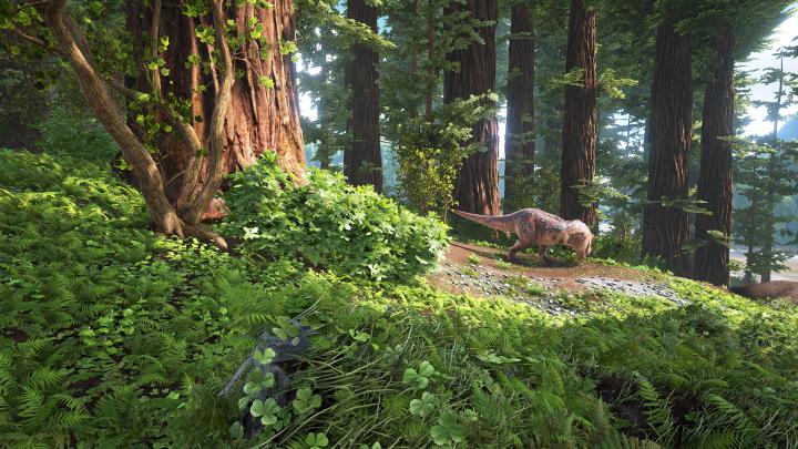 20160526_Redwood-biom