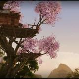 archeage_dom-na-drzewie